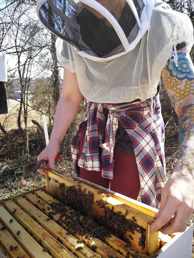 Mom's Organic Market Selling Bees Richland Honey Bees