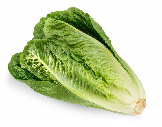 Limiting the Impact of the Romaine Lettuce Recall CDC FDA