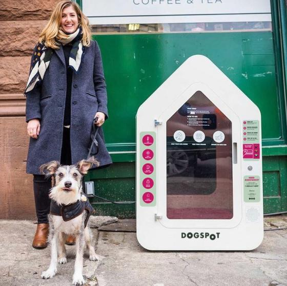 QFC to Offer Doghouses While Customers Shop