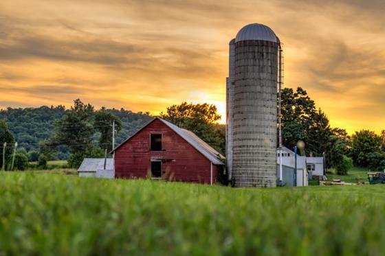 Big Y Again Backs Local Farmers Awards