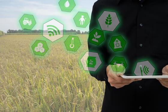 Tapping the Potential of IoT in the Food Cold Chain