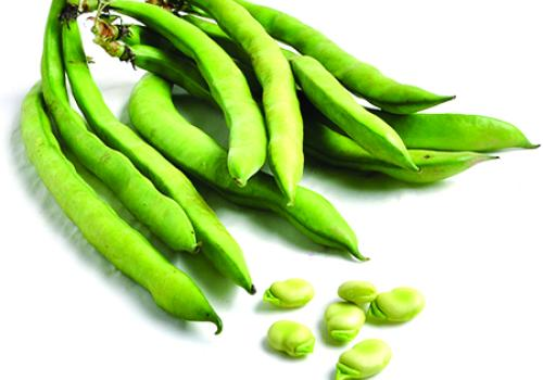 Fava beans, also called broad beans