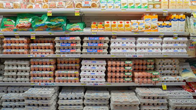 Grocers' Claims Rejected in Egg Antitrust Case