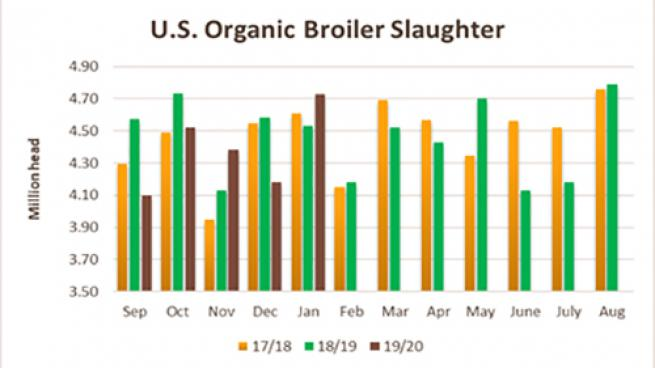 Slower Organic Poultry Growth Could Hurt Grains Market