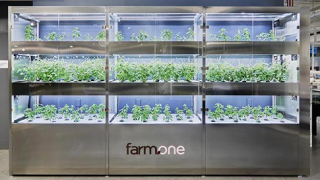 Whole Foods Store Features Mini-Farm