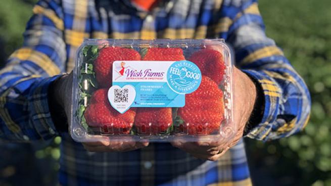 Wish Farms Refreshes Brand Berries App Website