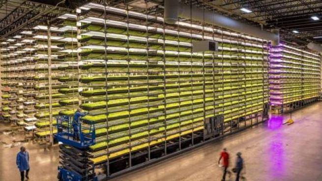 Vertical Farming Company to Be Publicly Traded