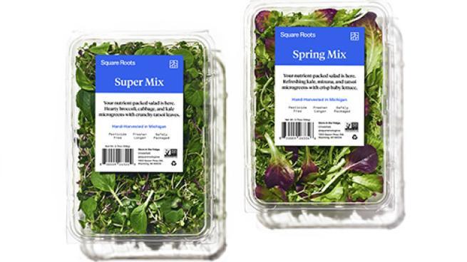 Square Roots Salad Mixes
