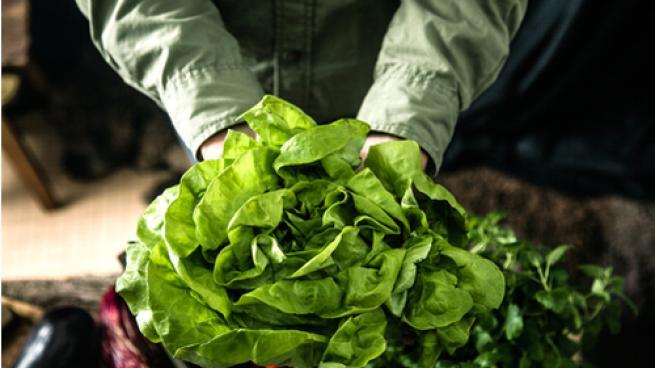 Organic Trade Association Hires New Director of Public Affairs