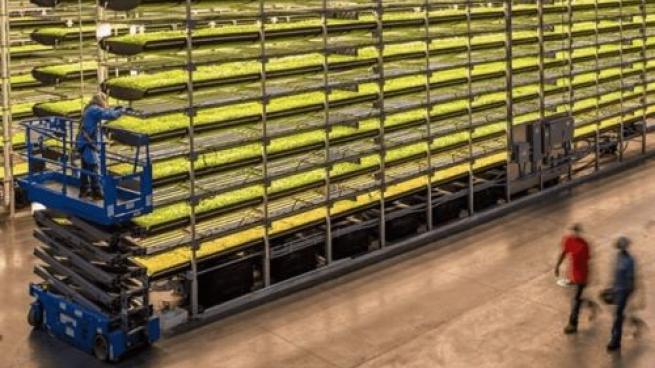 AeroFarms Indoor Farming Deal Falls Through