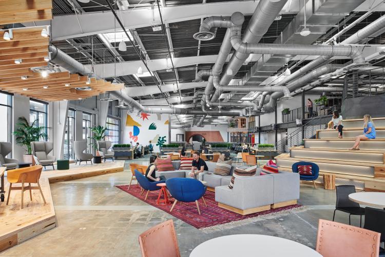 H-E-B Tech Hub