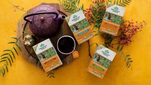 Organic India Tulsi Immune Teas