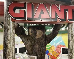 Giant Food Stores Debuts Berenstain Bears Treehouse