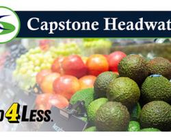 Food 4 Less Franchisee Forms ESOP