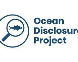 Food Lion Ups Sustainable Seafood Sourcing Transparency