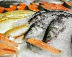 Giant Food Increases Seafood Sourcing Transparency