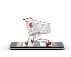 Weathering Inevitable E-Commerce Growing Pains