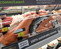 Stop & Shop Boosts Seafood Sourcing Transparency Ocean Disclosure Project