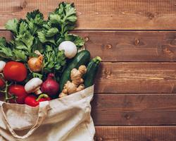 Plant-based Product Shopping Platform Debuts 2-Day Shipping E-Commerce