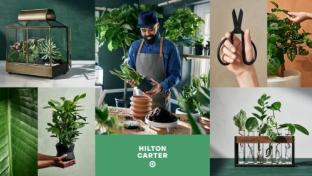 Target Collaborates With Plant Stylist for 1st Time