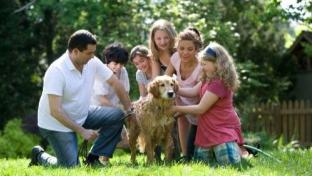Changes in Pet Parenthood Lead to More Sales Opportunities – and Competition