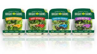 BrightFarms Debuting High-Tech North Carolina Greenhouse Leafy Greens Indoor Farming