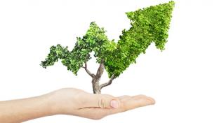 How to Drive ROI With Sustainability Efforts: Real World Lessons from Industry Leaders