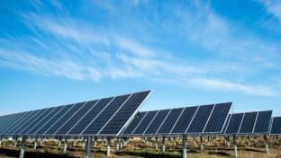 UNFI Invests in New Solar Facility in North Carolina