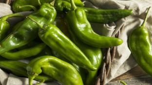 Grocers Start Peppering in Hatch Chile Promotions
