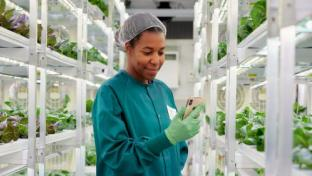 Indoor Farming Is in Growth Mode