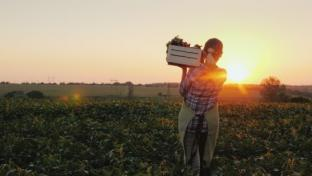 Natural Grocers Honors Organic Harvest Month in September