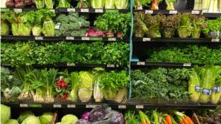 Publix Outlines Efforts to Address Hunger
