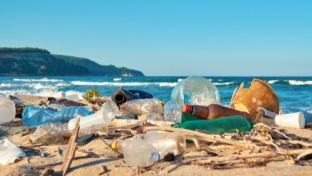 4 Big Food Retailers Scored Lowest on Plastic Pollution Scorecard